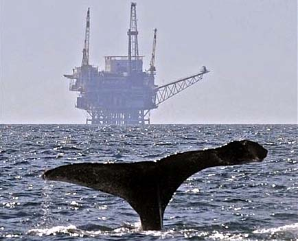 Offshore Fracking California