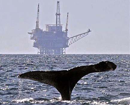 Offshore Fracking California
