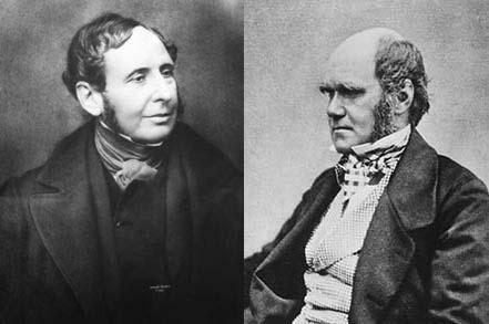 Fitzroy-Darwin