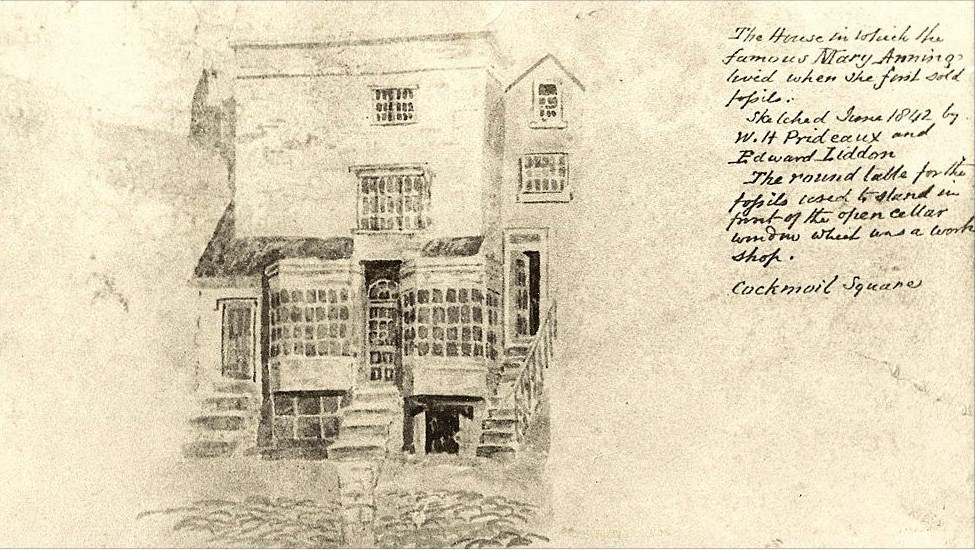 Mary_Anning's_house_and_shop_in_Lyme_Regis,_drawn_in_1842